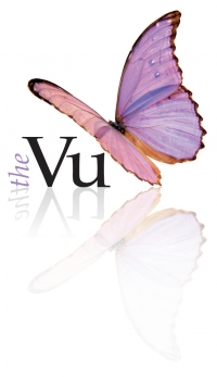 The Vu logo